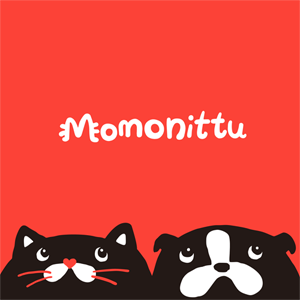Momonittu Torino